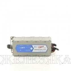 Устройство зарядное Battery Service Expert 12В