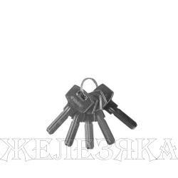 Заготовка ключа для цилиндровых механизмов, компьютерный тип, 5шт.